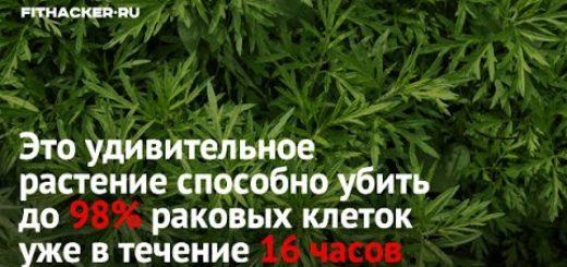 Eto-rastenie-ubivaet-98-rakovyh-kletok-i-darit-zhizn-3-sekretnyh-retsepta-lecheniya-raka
