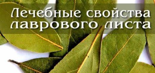 Lechenie-lavrovym-listom.-20-tselebnyh-svojstv-lavrovogo-lista.-Retsepty